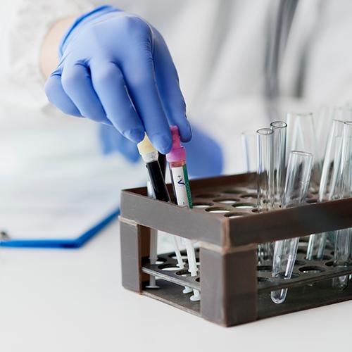 Exames laboratoriais veterinários